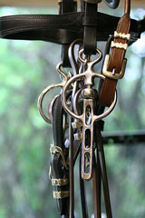 horse driving bridle