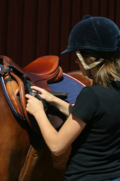 horse tack - dressage saddle and riding helmet
